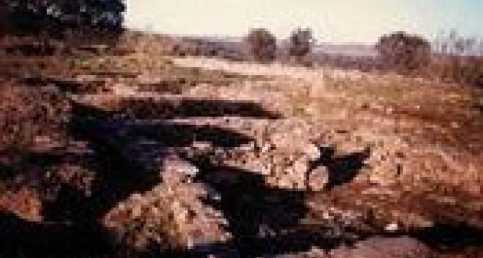 Restos de la Edad del Hierro en Botija
